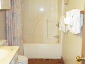 Bathroom 1 view 1